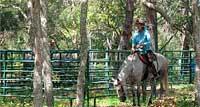 Cedar Ridge Ranch